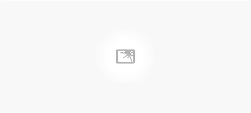 Wire Harness Assembly, Wire Harness Assembly – Main
