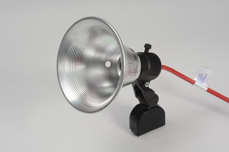 "Magnetic 5-1/2"" Spot Light w/25' Cord"