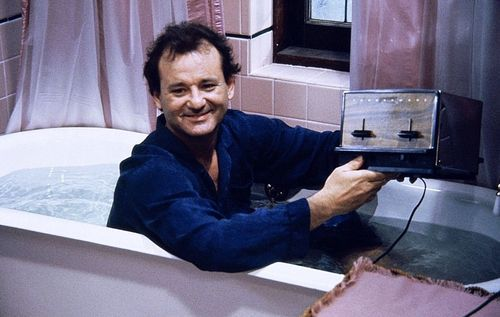 Groundhog, Staying Grounded on Groundhog Day: No Toasters in the Tub Please