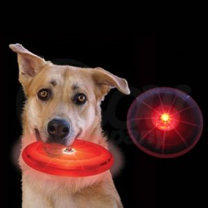 LED uses for dog toys