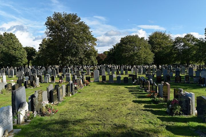 eCommerce Graveyard, Dying to Enter the eCommerce Graveyard: Please Don't Be Next
